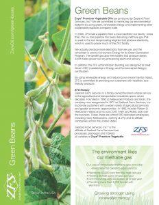 ZFS Green Beans Flyer